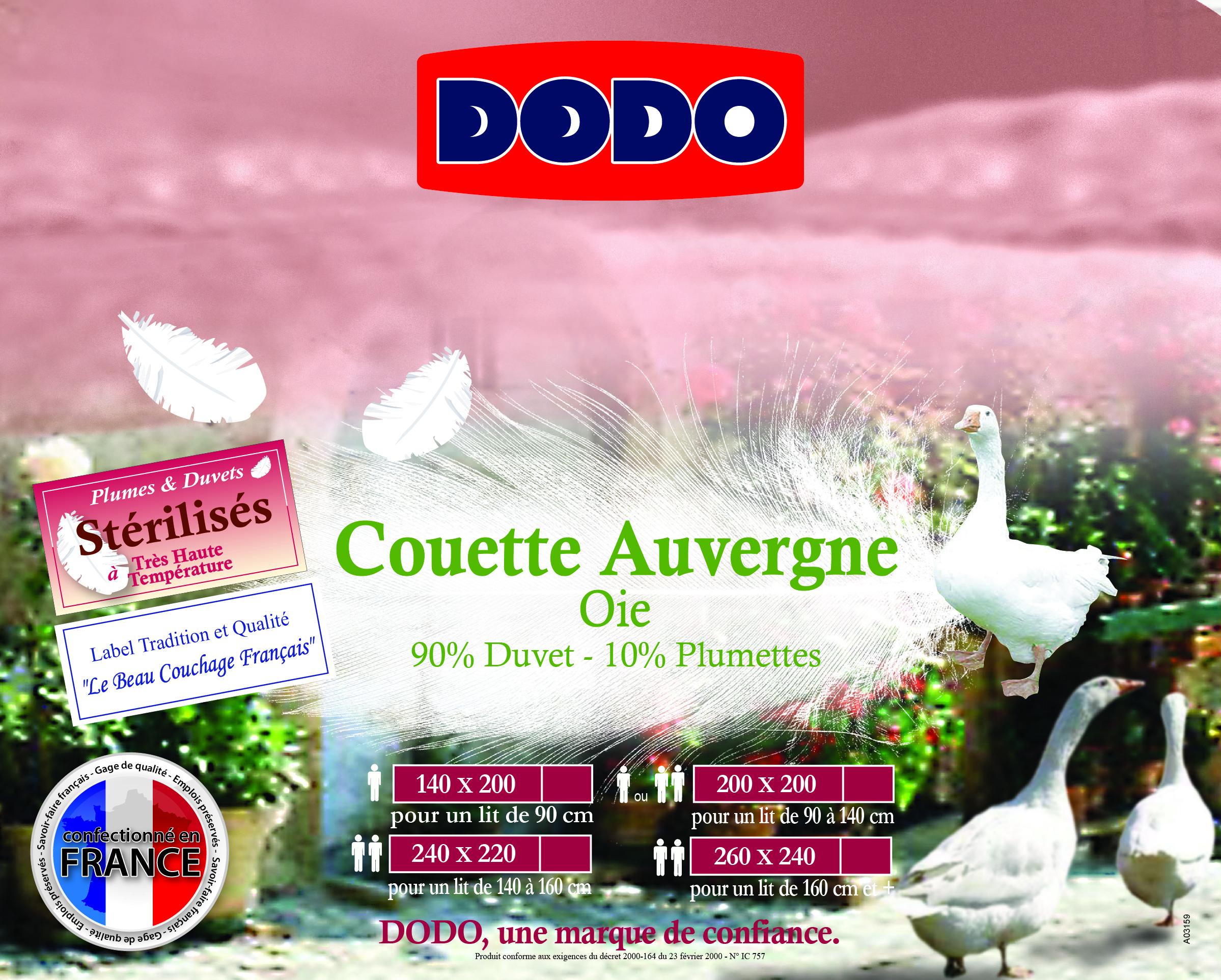 Couette duvet d 39 oie 300 g m - Destockage couette dodo ...